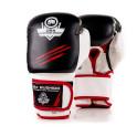 Boxerské rukavice DBX BUSHIDO DBD-B-2 v3 14 oz