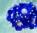 Perlilčka tm. modrá
